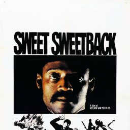 Movies Most Similar to Sweet Sweetback's Baadasssss Song (1971)